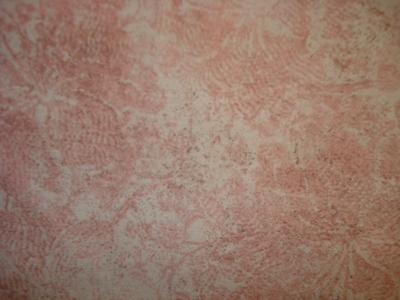 Jinny Beyer palette 6340-011